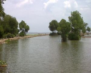 Sungai Tahang