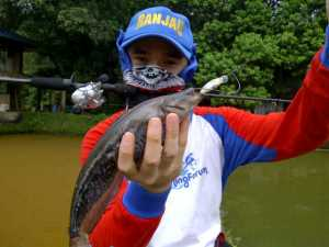 Baby Tapah on L-Minnow 33mm Floating